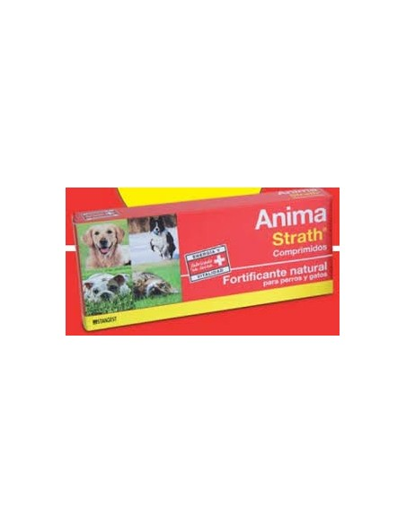 ANIMA STRATH 360 CPD