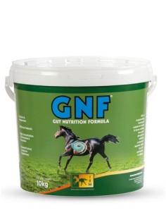 GNF ULCERA+PROBIOTICO pellets 3KG