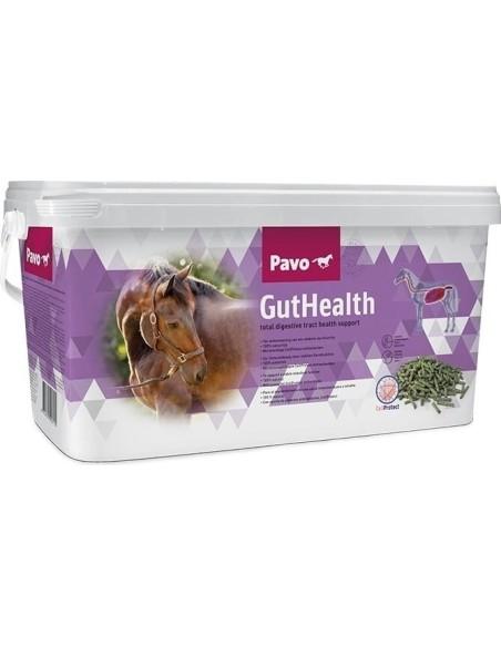 PAVO GUTHEALTH CUBO 8 Kg